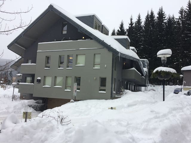 Apartmán Harrachov - Harrachov - Appartement
