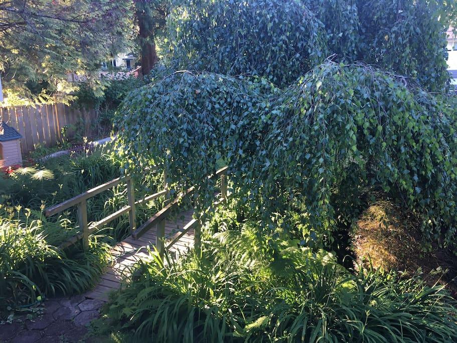 Backyard oasis :)