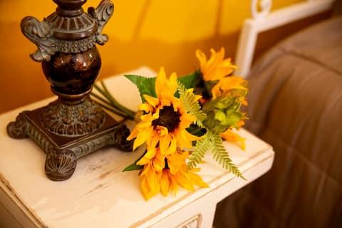 Casa dos Girassóis - Conheça a beleza do Alentejo!