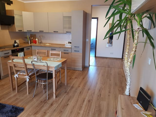 Near main train station room with sharing living