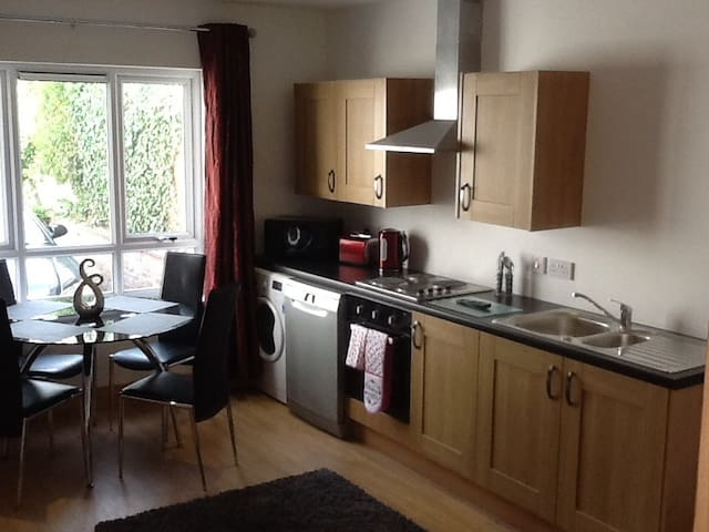 Apartment in Newry with hot tub