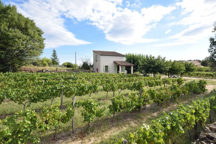Holiday home surrounded by vineyards with swimming pool and private terrace