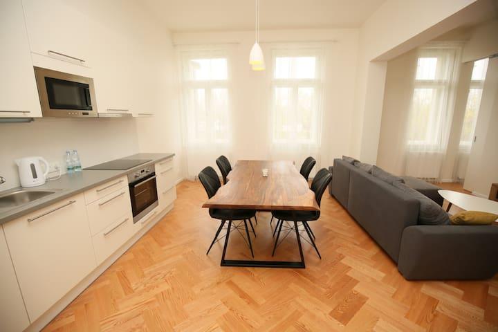 Well designed Exclusive 2 room apartment  3 - Praga - Pis