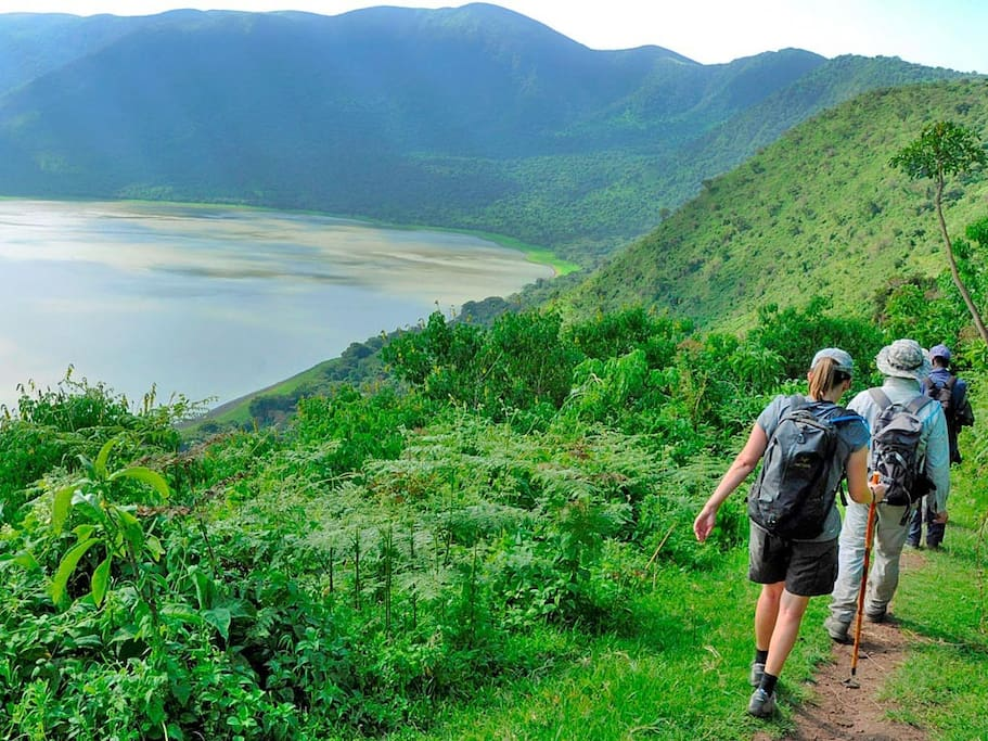 The picture shows the Ngorongoro crater found in Ngorongoro Conservation Area.  NCAis aprotected areaand aWorld Heritage Sitelocated 180km (110mi) west ofArushain theCrater Highlandsarea ofTanzania. The area is named after Ngorongoro Crater, a large volcaniccalderawithin the area. The conservation area is administered by the Ngorongoro Conservation Area Authority, an arm of the Tanzanian government, and its boundaries follow the boundary of the Ngorongoro Division of theArusha Region.