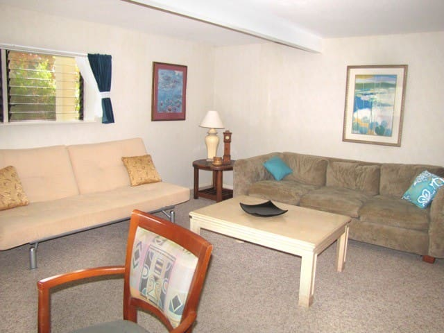 Large 1-bedroom apartment, sunny area near beaches