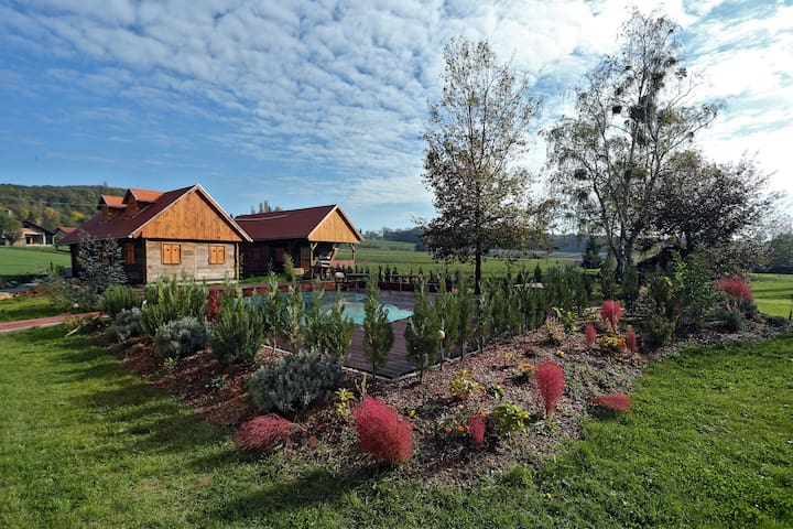 Authentic house near Zagreb, only 20 min away