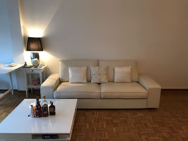 Central Geneva Studio with excellent guest reviews