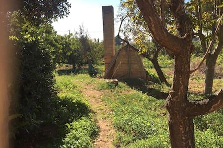 Caseta del Pí - Museros - Bungalo
