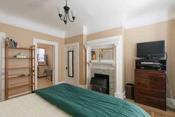 Main room showing premium comfort bed, bookshelves, kitchen and closet doors, original Edwardian fireplace with gas-fire heater, mantel and mirror, dresser with entertainment center.