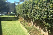 Garden and trampoline (at own risk!)