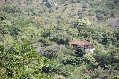 Tropical Wildlife Sanctuary with Biophilic House