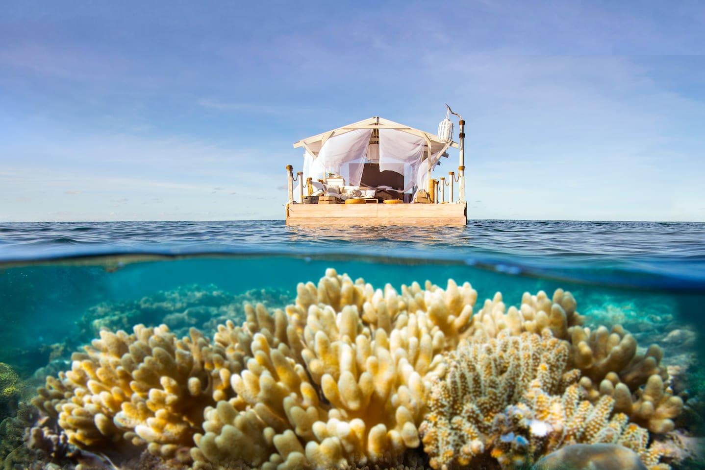 Uma Noite na Grande Barreira de Coral