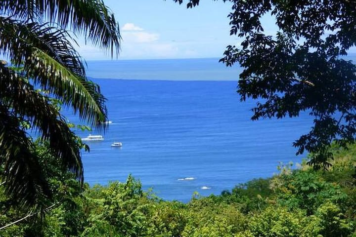 Cabin in the Jungle! Best location Manuel Antonio! - Quepos - Apartamento