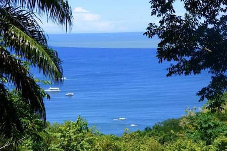 Cabin in the Jungle! Best location Manuel Antonio! - Quepos