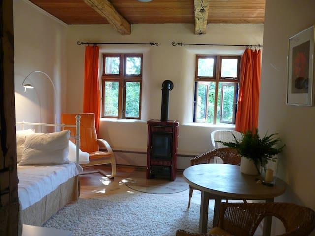 Bio- FeWo mit Kaminofen, Sauna und Wintergarten - Bleckede - Wohnung