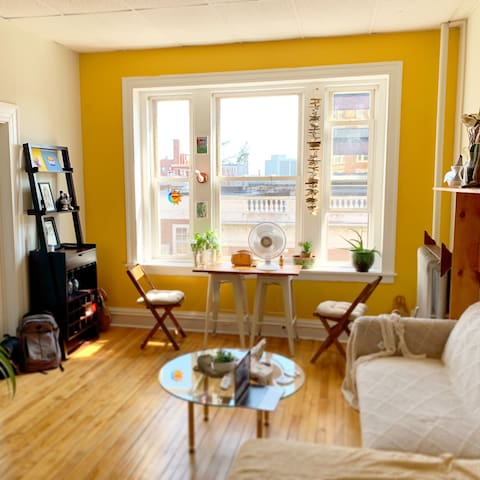 Sunny, cozy downtown apartment