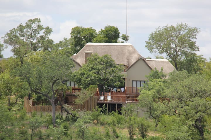 Marula Safari Lodge - Elephant Point