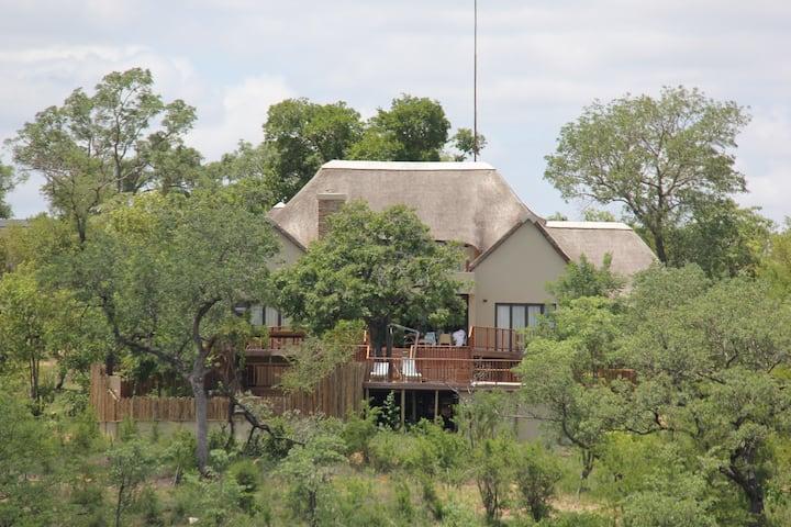 Marula Safari Lodge - Elephant Point