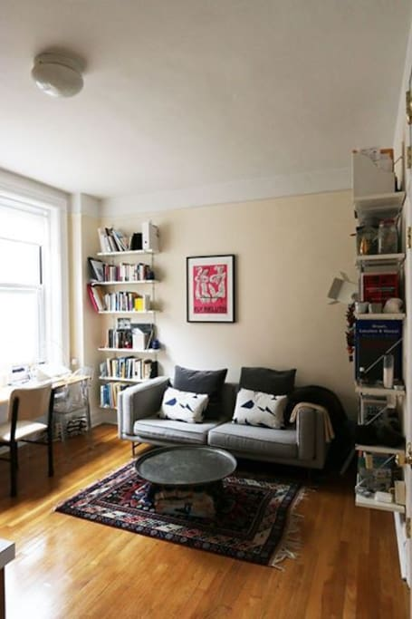 Living room with lots of light, lots of books, and a comfortable sofa