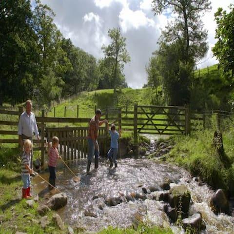 Lake District Farm - Canvas Frills Lodge
