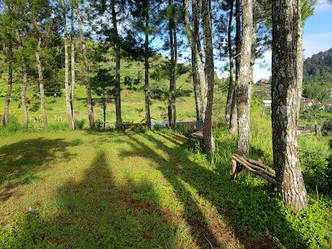 Camping Ground di Jungle (Sewa Tempat), Ciwidey-3