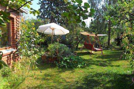 Künstlerinnenhof mit Hund und Ente - Clenze - Rumah