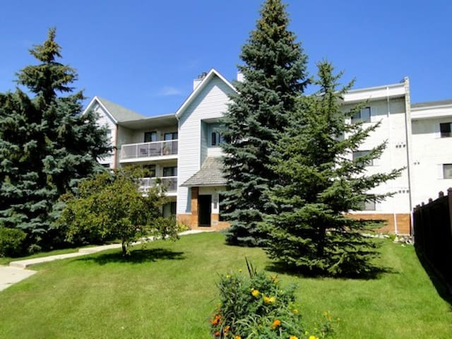 Private room in a 3 bedroom apartment - Winnipeg - Apartment