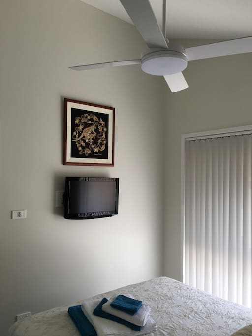 Fan and TV in Bedroom