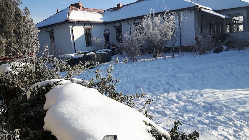 Romanian traditional house - Dragodana - Дом