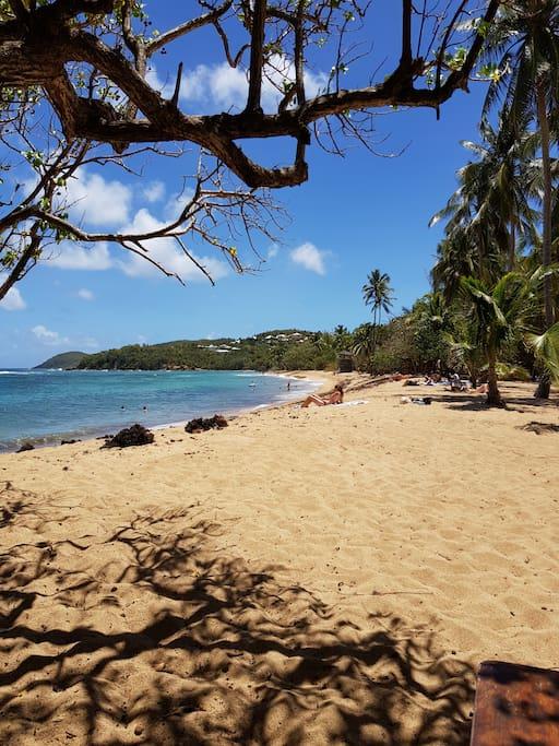 Une petite balade sur la plage ou farniente ?