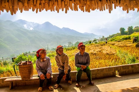 The little Hmong homestay