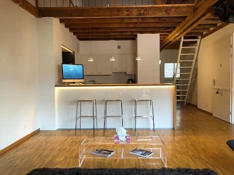 Spacious and modern 4 and 1/2 loft - Geneva center