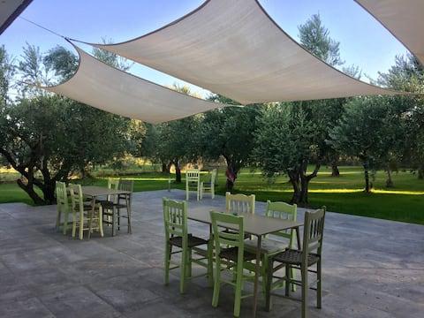 Communal Olive Garden