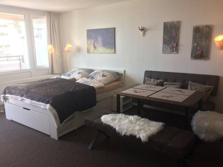 Ferienwohnungen Gold (Sankt Englmar), Appt. Heidi mit großem Balkon