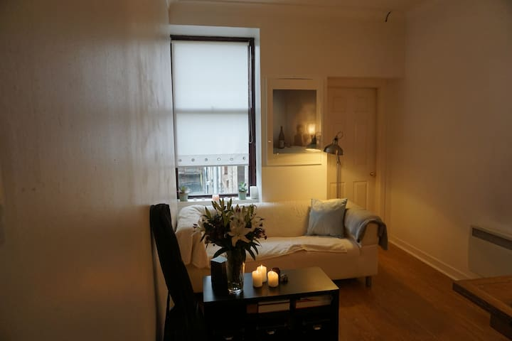 Comfortable 1 bedroom flat in central west end