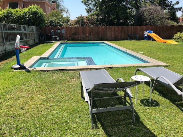 Pool / backyard