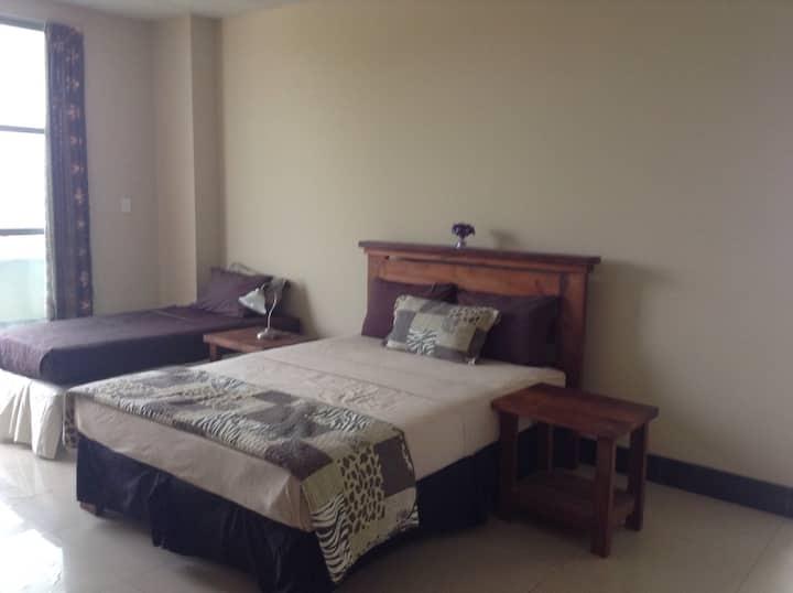 I apartment, separate lounge, CBD
