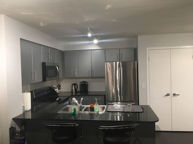Fully stocked unit near Air Canada Center - Toronto
