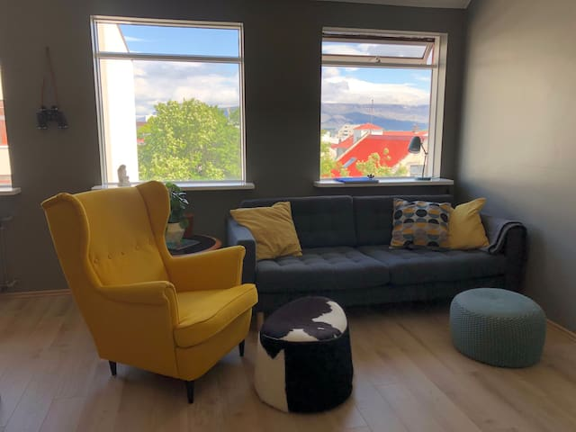 Cosy condo right in the heart of Reykjavík.