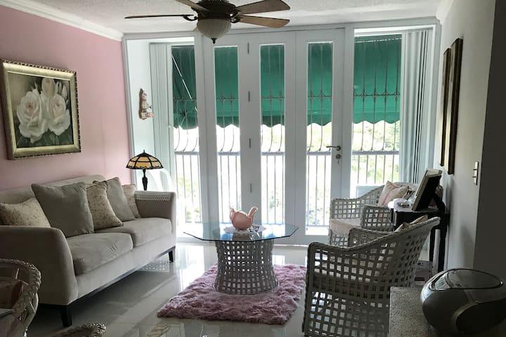 Cozy 2 BR apartment in Los Paseos/Montehiedra area