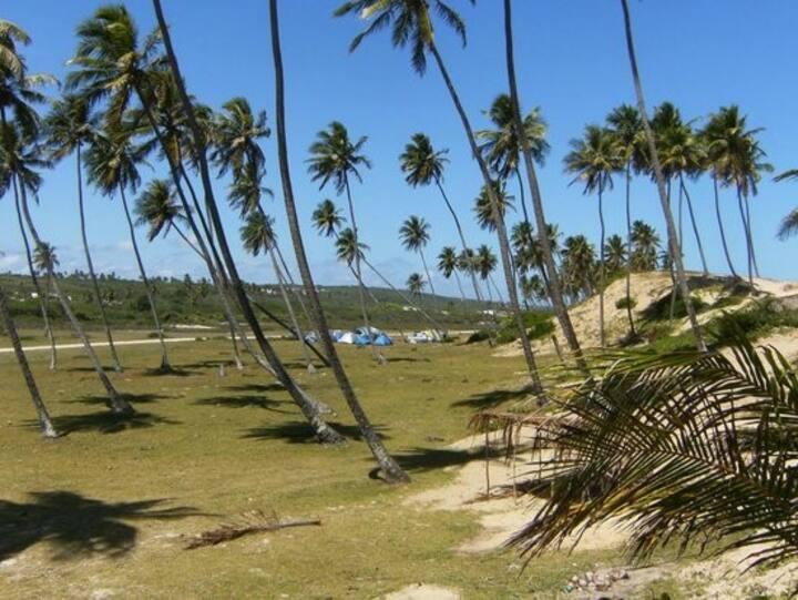 Aconchego quitinet praia Massarandupio Ba