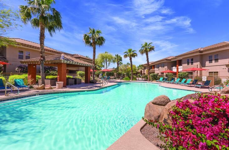 Scottsdale, AZ, Studio Z #1