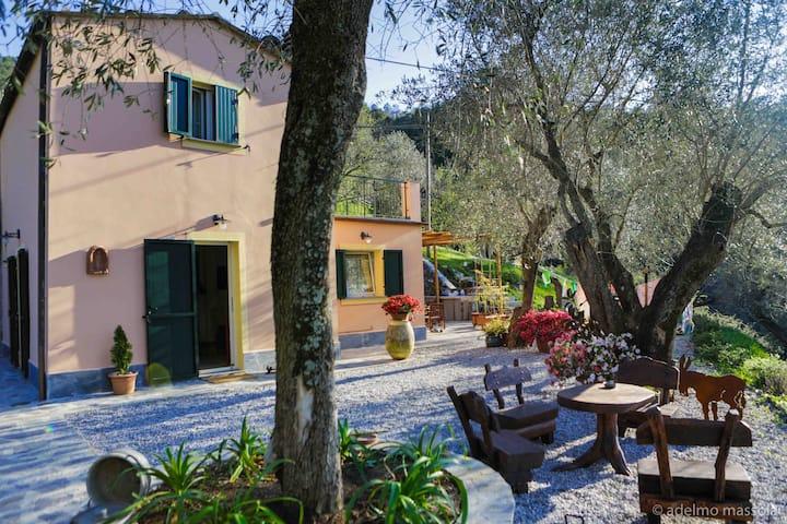 Charming Villa Trinchetto- Levanto Cinque Terre