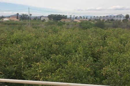 En pleno corazón de la huerta ... - Murcia - Apartamento