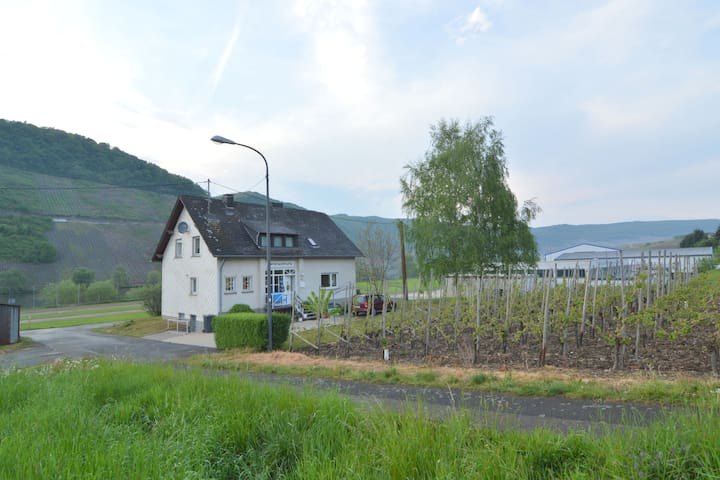 At the Mosel shore located apartment, on the route of the famous Moselsteig