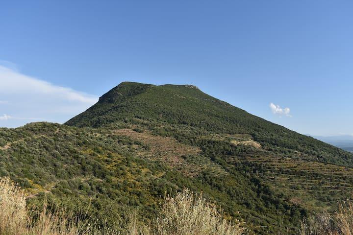 Βουνό Βουλκάνο