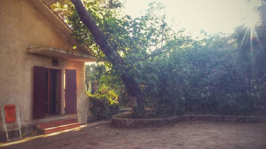 """Il """"Melograno"""", una villa sul mare - Saline Sadun - Villa"""