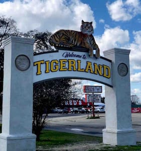 Bold's Tigerland Retreats IIII