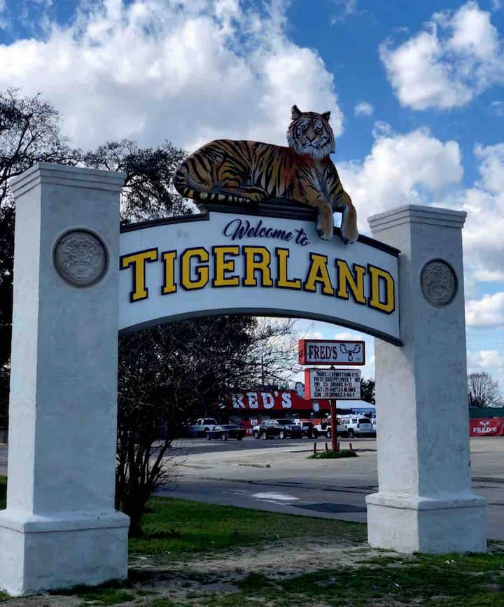 Bold's Tigerland Retreats I