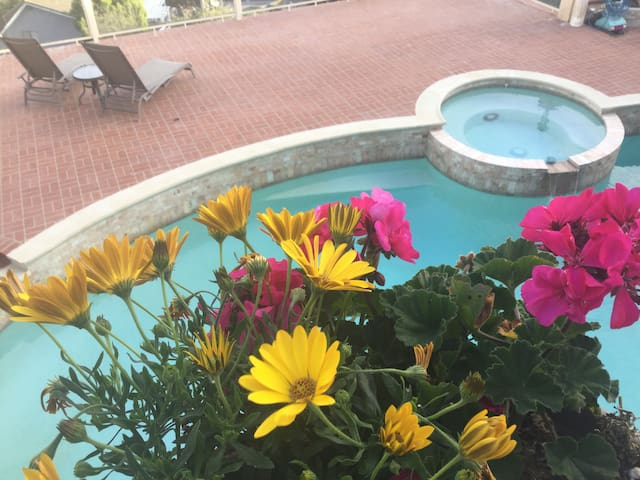 Spring Time by the Pool.
